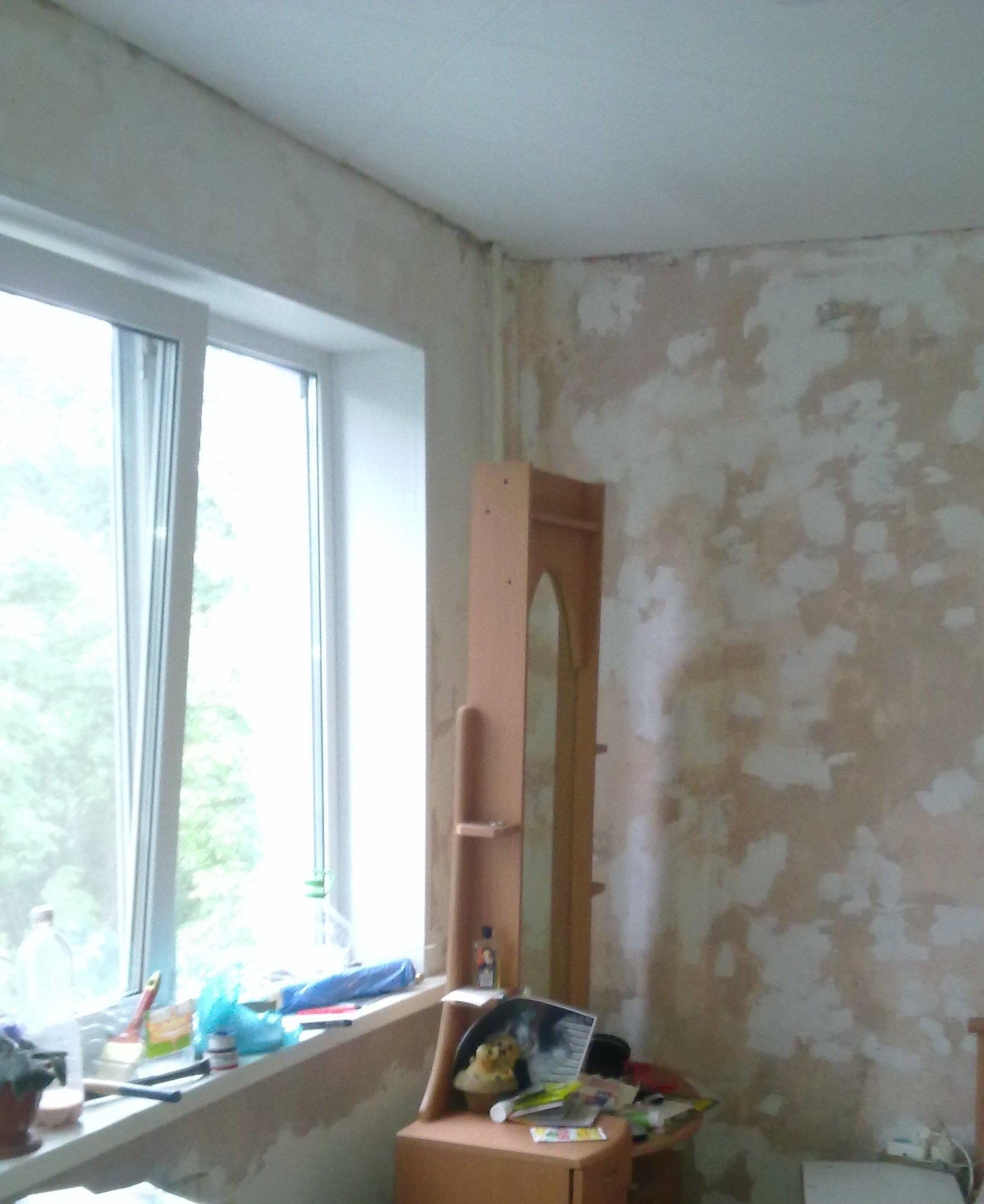 плесень на стенах под обоями:
